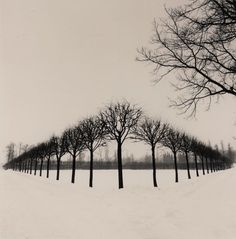 Michael Kenna - Perspective of Trees, Tsarskoe Selo, Russia, 1999 - Landscape Photography 2 Point Perspective Drawing, Perspective Art, Perspective Photography, Eerie Photography, Landscape Photography, Photography Kids, Photography Aesthetic, Abstract Photography, Vintage Photography