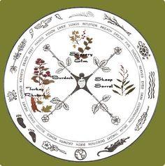 native american medicine wheel | medicine wheel