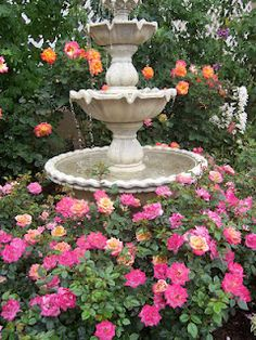 Roses around a water fountain... As soon as we are working on a flower garden... I backyard. I want one of these
