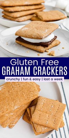 Homemade Gluten Free Graham Crackers - made from scratch with simple pantry-staple ingredients. Use them to make s'mores, dunk in milk for after school snacks, or scoop up your favorite dessert dips! Dessert Dips, Desserts, Gluten Free Graham Crackers, After School Snacks, Pantry, Milk, Homemade, Breakfast, Simple