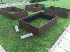 Warzywa uprawiane w skrzyniach, pojemnikach - strona 68 - Forum ogrodnicze - Ogrodowisko