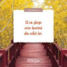 God Loves You, Faith Quotes, Gods Love, Bible Verses, Love You, Bible, Religious Quotes, Te Amo, Love Of God
