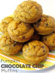 Healthy Pumpkin Chocolate Chip Muffins
