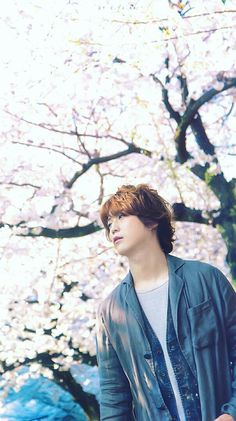 Kame+cherry blossom trees Perfection This makes such a perfect wallpaper ;) Cherry Blossom Tree, Blossom Trees, Asian Boys, Asian Men, Akanishi Jin, Perfect Wallpaper, Japanese Beauty, Pretty Boys, Turtle