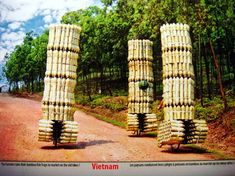 farmers take their bamboo fish traps to market (Vietnam)