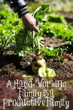 Many are growing up to feel entitled today; entitled to free things without working for them. Yes, there is a place to help those who can't help themselves but there are WAY too many who are getting things for free and are able to work. Many out of work, don't even look for work. God calls us to work, period. How about you? Is your home always a mess, do your children sit around all day playing video games and watching television or is your home a hard-working productive home?