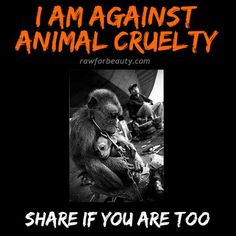 I AM AGAINST ANIMAL CRUELTY... My number one thing that I cannot and will not stand for