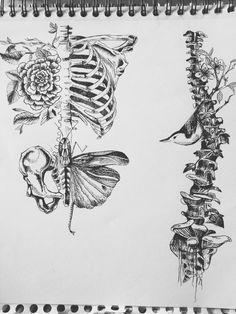 skeletons and flowers - Google Search