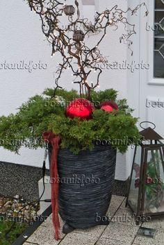 Bildresultat för weihnachtsdeko hauseingang