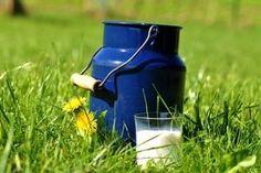 Die Nachfrage nach Bio-Milchprodukten steigt in Österreich mäßig, aber ungebrochen. Water Bottle, Drinks, Dairy, Drinking, Water Flask, Drink, Cocktails