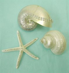 Crystal Studded Shells - Beach Decor, in a beach cottage bedroom or bathroom, great idea