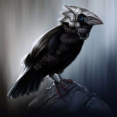 640x640 2409 The Eye Catcher 2d fantasy bird raven by ... - Sometimes your Familiar needs a little extra armor