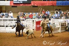Fort Worth Stock Show from 1-28-13 evening perf  (c)CydByrd