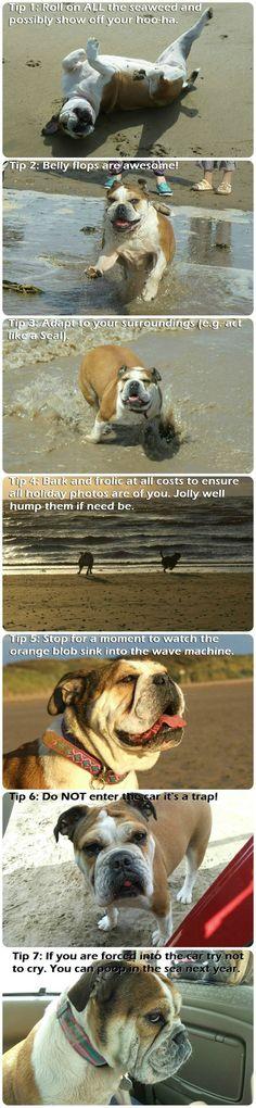 Bonnie's 7 tips for beach trips. - Imgur