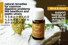 Young Living Fennel  https://www.youngliving.com/signup/?isoCountryCode=US&sponsorid=1704613&enrollerid=1704613