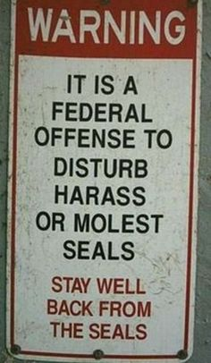 4.) Seal robbery and seal murder is totally ok though.