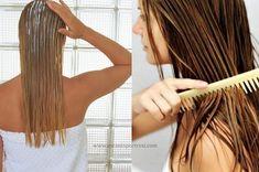 kuru ve yıpranmış saçlar için bakım_mini