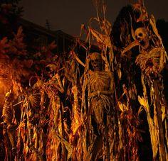 Halloween - All For Garden Halloween Prop, Halloween Scene, Scary Halloween Decorations, Halloween Haunted Houses, Outdoor Halloween, Holidays Halloween, Halloween Themes, Halloween Witches, Happy Halloween