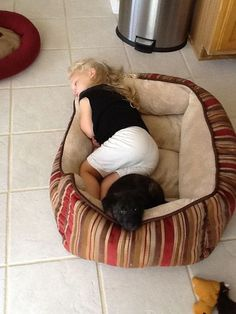 Dog bed for all!
