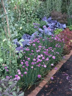 Herb Garden Feast ~ A feast for the eyes and nose is created when planting an herb garden.