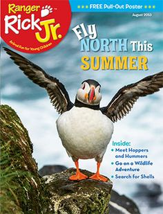 Learn about what summer in the Arctic is like in our August issue! http://www.nwf.org/Kids/Ranger-Rick-Jr.aspx