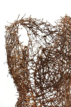 JACQUI CROCETTA  protect, nurture, release twigs and wire detail