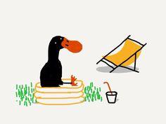 Hi's Ringo, the black duck
