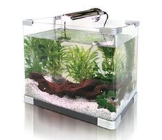 """Maintaining a Small Aquarium"" from 'Think Fish', a website with excellent freshwater aqua info"