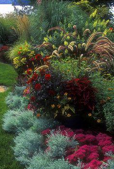 "Sunset is featuring this garden photo in their new book ""The Twenty Minute Garden""."