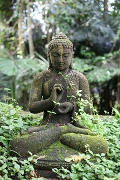 Mossy Garden Buddha Lava stone Buddha collection from Design MIX Furniture in Los Angeles