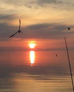 Dicesi cu.... #trasimenolake #tramonti__italiani #world_beautiful_skies by nicoletta_scortichini