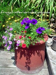 Old chimney topper is used as a hefty, decorative planter for a container garden.