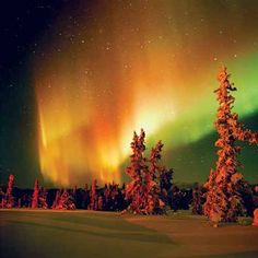 "Think of the ""Aurora Borealis"" as the ultimate holiday lights display."
