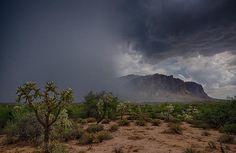 Desert Rain by Saija Lehtonen - Desert Rain Photograph - Desert Rain Fine Art Prints and Posters for Sale