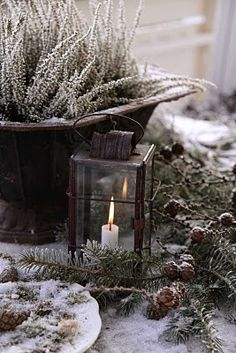 lantern and evergreens with snow