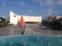 Casi listo el pino en el Museo de Historia Mexicana