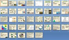 This product includes the Ecology Unit Lesson topics - 33 files.    Each topic contains a PowerPoint presentation, Notes Outline, Homework Assignment, Vocabulary, Lab Lessons, Quizzes, Test Prep Question bundles, and a Unit Exam. In total, there are 4 PowerPoint Presentation Lesson Plans, 4 Smartboard Notebook Presentations, 4 Notes Outlines, 5 Lesson Plans/ Projects, 5 Homework Assignments, 1 Vocabulary Transparency, 3 Laboratory Lessons, 1 Quiz, 4 Test Prep Bank Questions and 2 Exams…
