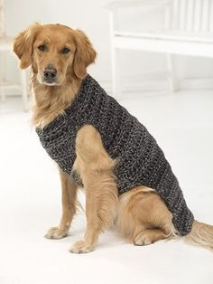 Free Pattern! Crocheted Dog Jumper in Lion Brand Hometown USA