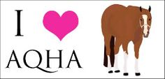 Montana Silversmiths loves AQHA!  We are proud to be the Official Silversmiths of the AQHA.  www.montanasilversmiths.com/AQHA