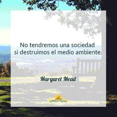 No tendremos una sociedad si destruimos el medio ambiente. Margaret Mead