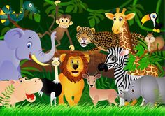 cartoon zoo animals: Animal in the jungle Illustration
