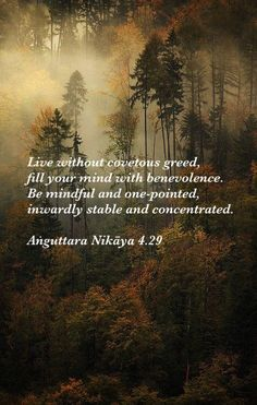 Anguttara Nikaya 4.29, Theravada Buddhism