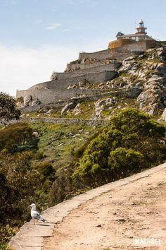 Camino al faro de Cíes Parque Nacional de las Islas Atlánticas de Galicia Islas Cíes