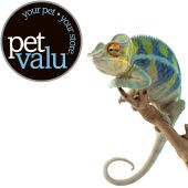 Pet Food, Pet Supplies, Pet Products & More | U.S.