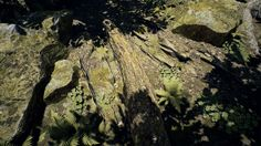 Name:  MAWI_ForestTreeCollection_wip11_small.jpg Views: 357 Size:  774.9 KB