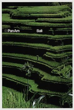 Ivan Chermayeff and Thomas Geismar. Pan Am Bali. 1972
