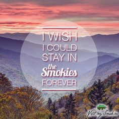 Don't you agree? I love our cabin in the Smoky Mountains and so would you.