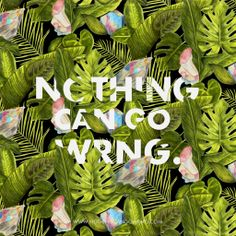 Nordic Tropic - Free downloadable wallpaper