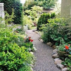 pea stone with river rock border walkway - Google Search