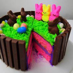 Chocolate Easter Peeps Cake, Rainbow Rabbit Layer Easter Peeps Cake,Handmade Cake For Kids Holiday Cakes, Holiday Desserts, Holiday Baking, Holiday Treats, Easter Desserts, Easter Peeps, Hoppy Easter, Easter Treats, Easter Bunny